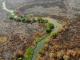 PV quer inviabilizar uso de áreas propositalmente degradadas para agricultura